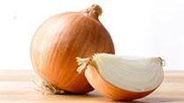 Ingrediente Cebolla Blanca